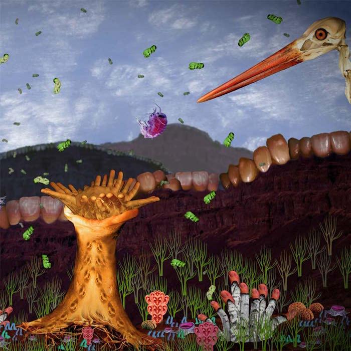 Dustmites Depend On Us / Vinir okkar rykmaurarnir